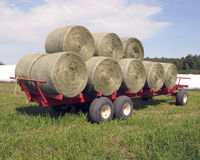 Round bales of hay Royalty Free Stock Photos