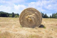Round Bales of Hay Closeup Stock Photos