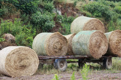 Round bales of hay on flat bed trailer Stock Image