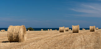 Round bales of hay Royalty Free Stock Images
