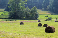 Round bales Royalty Free Stock Photography
