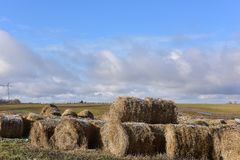 Round bales of hay lined up. Along a field Stock Photos