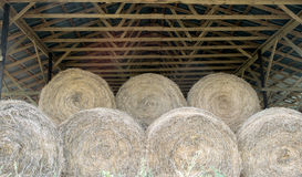 Round bales of hay in wooden barn Stock Photo