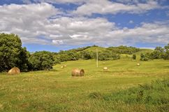Round bales on hilly country Stock Photo