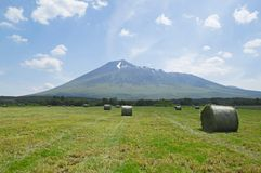 Free Round Bales Of Straw In The Meadow Royalty Free Stock Photos - 25697528