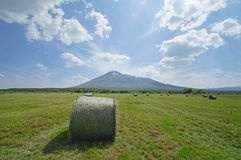Free Round Bales Of Straw In The Meadow Royalty Free Stock Photos - 25697538