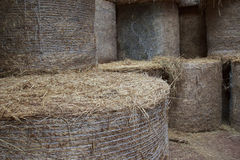 Round Bales Stacked in the Loft. Round Bales stacked high in the Loft of the barn Stock Photo