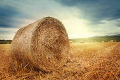 Round bales of straw stock photography