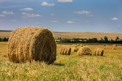 Round bales of straw in the farmland Royalty Free Stock Photo
