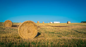 Round bales of straw Stock Photos