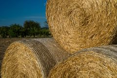 Round bales of straw lying on a plowed field in the background of a beautiful blue sky. royalty free stock photography