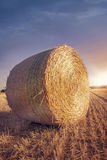Round bales of straw Royalty Free Stock Images