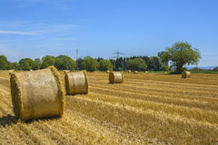 Round bales of straw Stock Photo