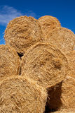 Round bales of straw in a stack Royalty Free Stock Images