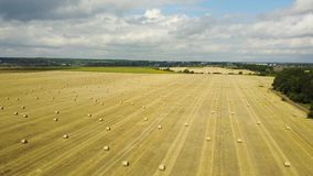 Round Bales Of Straw stock footage