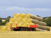 Round bales and trailer Royalty Free Stock Image