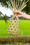 Round bamboo basket Stock Image