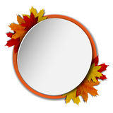Round banner with autumn leaves Royalty Free Stock Photo