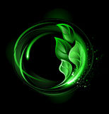 Round banner with green leaves Royalty Free Stock Image