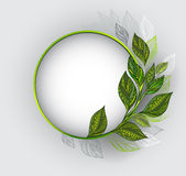 Round banner with patterned tea leaves Stock Image