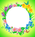 Round banner spring flower Stock Photography