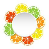 Round banner for your text with slice citrus fruits. Vector illustration royalty free illustration