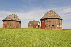Round barns Stock Photo