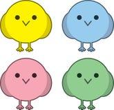 Round Birds Stock Image