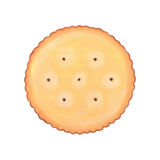 Round biscuit cookie illustration Stock Photography