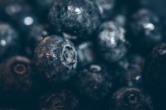 Round Black Fruits Stock Photos