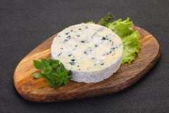 Round blue cheese. With salad and basil royalty free stock photo