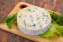 Round blue cheese. With salad and basil royalty free stock images