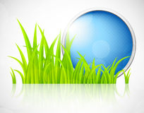 Round blue frame in grass Royalty Free Stock Images