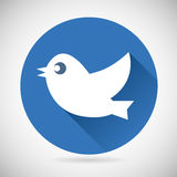 Round Blue Social Media Web or Internet Icon Bird Royalty Free Stock Photo