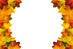 Round border composed of autumn leaves stock photo
