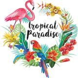 Round Border with Tropical Flowers and Birds Stock Photo