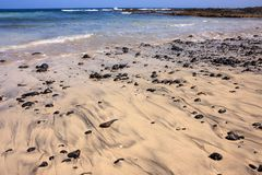Beach full of round rocks, many stones in sand Stock Images