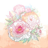 Round bouquet with five peony flower and leaves on the textured beige background with blots in pastel color. Royalty Free Stock Image