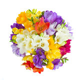 Round bouquet of freesias flowers Stock Images