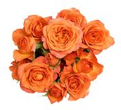 Round bouquet of orange rose flowers royalty free stock image