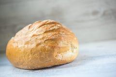 Free Round Bread Stock Image - 49797211