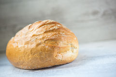 Round bread Stock Image