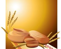 Bread and loaf on a brown background with spikelets. Round bread and a loaf on a brown background with spikelets vector illustration