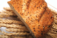 Round bread and wheat Royalty Free Stock Photos