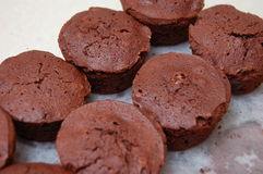 Round Brownies Stock Image