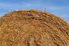 Round bundle of straw. The field is harvested. Sun is shining. Royalty Free Stock Photos