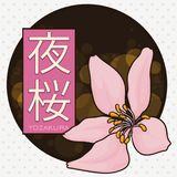 Button for with Cherry Blossom for Yozakura or Nocturnal Hanami, Vector Illustration. Round button with a cherry flower over a night view with glows for Yozakura Stock Image