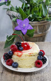 Round cake with fresh fruits Stock Photography