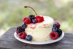 Round cake with fresh fruits Stock Images