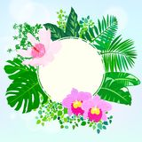 Round card with tropical elements of decor Royalty Free Stock Image